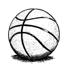 basketball ball hand drawing vector image