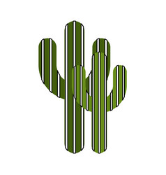 Cactus plant isolated icon vector