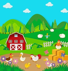 Chickens and ducks on the farm vector image vector image