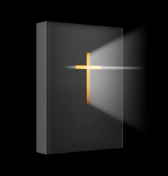 Realistic Bible vector image vector image