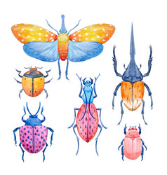 Watercolor beetle set vector