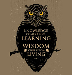 Knowledge comes from learning wisdom comes from vector
