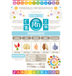 Manganese mineral supplement rich food icons vector