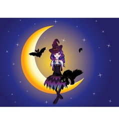 Witch on the Moon2 vector image