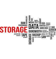word cloud storage vector image vector image