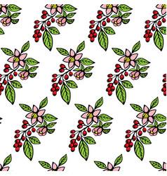 coffee flowers vector image