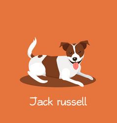 An depicting a cute jack russell dog cartoon vector