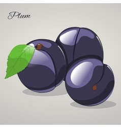 Cartoon sweet plum on grey background vector