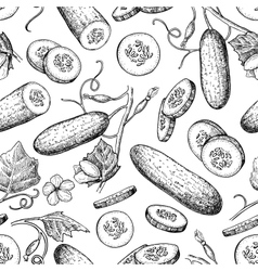 Cucumber hand drawn seamless pattern vector image vector image