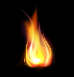 Realistic burning flame translucent element vector