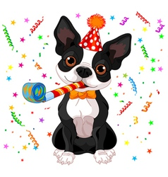 Boston terrier party vector
