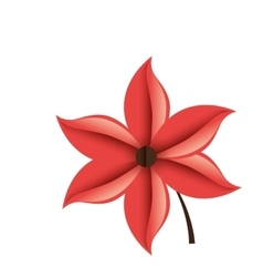 Decorative flower isolated icon vector