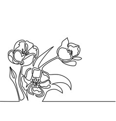 Drawing of beautiful flower vector