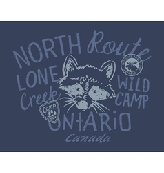 Raccoon wild camp vector