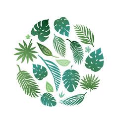 summer tropical paradise beach vector image vector image