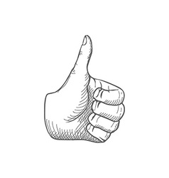 Hand giving a thumbs up vector