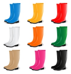 Colored rubber boots set vector