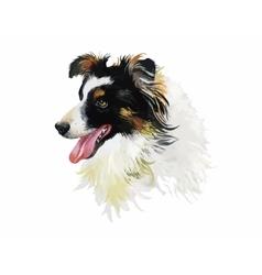 Border collie animal dog watercolor vector
