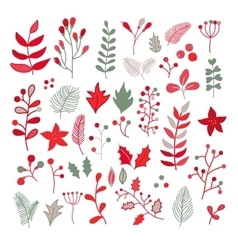 Christmas floral drawing set with holly vector