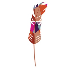 Colorful feather vector