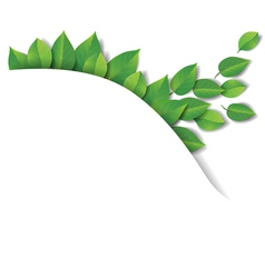 Green leaves wave vector