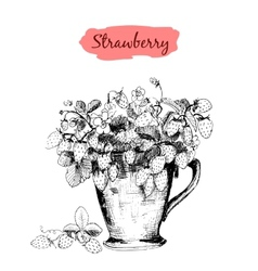 Strawberry in a cup vector image vector image
