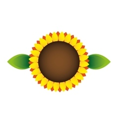 Sunflower ecology symbol icon vector