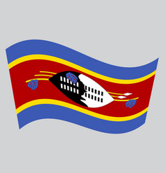 Flag of swaziland waving on gray background vector