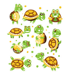 cartoon funny turtle set for label design vector image vector image