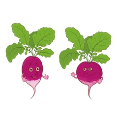 Character radish vector image