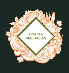 doodle sketched fruits and vegetables vegan vector image vector image