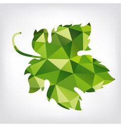 Grape green leaf in polygon style vector image