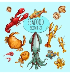 Seafood sketch colored vector