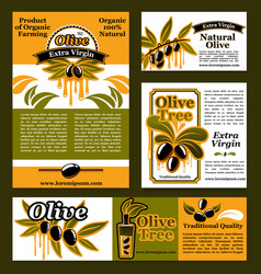 Banners and poster for olive oil poducts vector