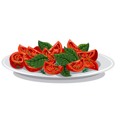 Tomato salad with basil vector