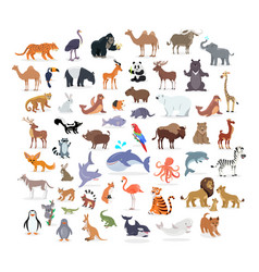 animal full length portraits collection on white vector image