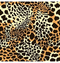 Leopards balck and yellow seamless pattern vector image