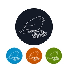 Icon of a bullfinch vector