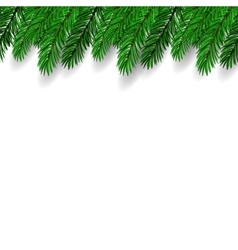 Fir Branch Symbol of New Year vector image vector image