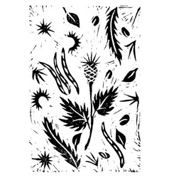 Hand drawing linocut autumn plants vector