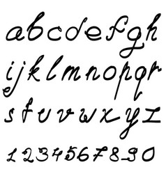 Calligraphic font with numerals vector