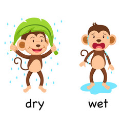 Opposite words dry and wet vector