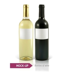 Bottles of white and red wine vector