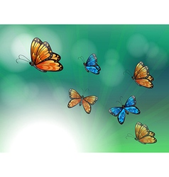 A stationery with orange and blue butterflies vector image