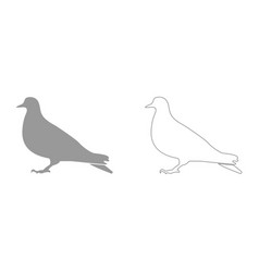 dove it is icon vector image