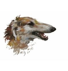 Greyhound animal dog watercolor vector image