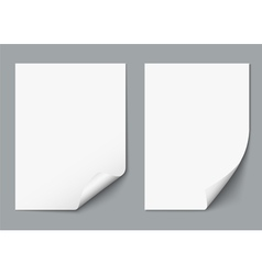 Two empty paper sheets vector