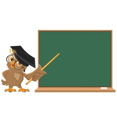 Owl teacher holding pointer at blackboard vector