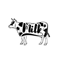 Cow Vintage isolated on white vector image vector image