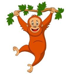 Cute orangutan cartoon hanging on a tree branch vector image vector image